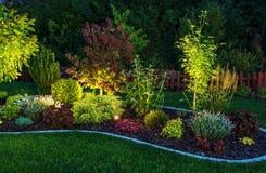 Upplyst trädgård Arkivfoto