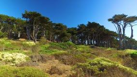 Upprättande av skottet av slingan för slut för land` s den kust- i San Francisco stock video