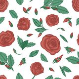 Upprepa modellen med rosor stock illustrationer