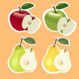 Uppsättning av äpplen och päron också vektor för coreldrawillustration Royaltyfri Foto