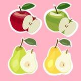 Uppsättning av äpplen och päron också vektor för coreldrawillustration Fotografering för Bildbyråer