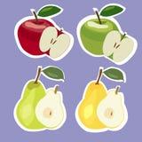Uppsättning av äpplen och päron också vektor för coreldrawillustration Royaltyfria Bilder