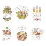 Uppsättning av översiktskonstbeståndsdelar för etiketter och emblem för organisk mat och drink Uppsättning av lantgårdlogoetikett Royaltyfri Bild