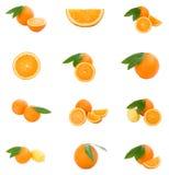 Uppsättning av apelsiner Arkivbild