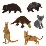 Uppsättning av australiska djur Fotografering för Bildbyråer