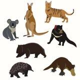 Uppsättning av australiska djur Arkivbild