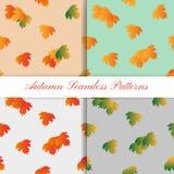 Uppsättning av Autumn Seamless Pattern med färgrikt Arkivfoton