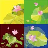 Uppsättning av bakgrund för lotusblommablomma Royaltyfria Foton
