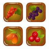 Uppsättning av Berry Icons på träfyrkant Royaltyfri Fotografi