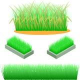Uppsättning av beståndsdelar av ett grönt gräs också vektor för coreldrawillustration Gräsgränser uppsättning, vektorillustration Arkivbild