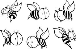 Uppsättning av biet Arkivfoton