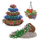 Uppsättning av blom- arrangememt Stock Illustrationer