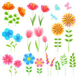 Uppsättning av blom- beståndsdelar Arkivbilder
