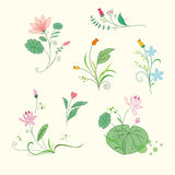 Uppsättning av blom- buketter för skönhet Fotografering för Bildbyråer