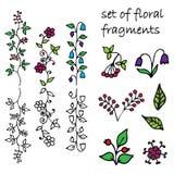Uppsättning av blom- fragment Arkivfoton