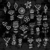Uppsättning av blommabeståndsdelarna som dras med krita Royaltyfri Foto