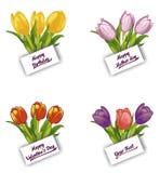 Uppsättning av blommakort med ett kort vektor illustrationer