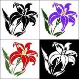 Uppsättning av blomman Arkivbilder