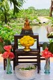 Uppsättning av buddha för den Songkran festivalen Arkivbild