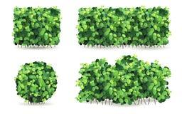 Uppsättning av buskar med gröna sidor av olika former Royaltyfri Fotografi