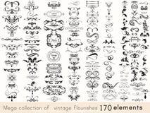 Uppsättning av calligraphic beståndsdelar för vektor och sidagarneringar Arkivfoto