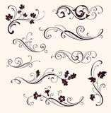 Uppsättning av calligraphic blom- beståndsdelar Dekorativa ris och blommor för vektor Royaltyfri Bild