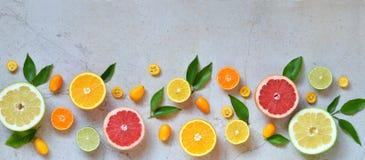 Uppsättning av citruns på ljus bakgrund: apelsin mandarin, citron, grapefrukt, limefrukt, kumquat, tangerin Nya organiska saftiga Royaltyfri Fotografi