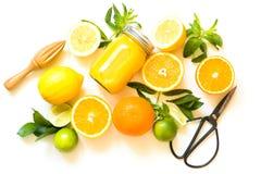 Uppsättning av citrurs på vit bakgrund, lekmanna- lägenhet Bästa sikt på apelsiner, citroner, limefrukt och mintkaramellen Danand arkivbilder
