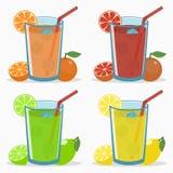 Uppsättning av citrus fruktsaft - apelsin, grapefrukt, limefrukt, citron Naturlig ny drink med sugrör, iskuben, skivan och halva  stock illustrationer