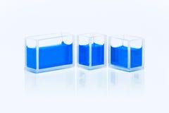 Uppsättning av cuvettes med blå flytande Royaltyfri Fotografi