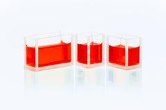 Uppsättning av cuvettes med röd flytande Royaltyfria Bilder