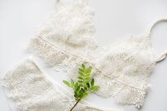 Uppsättning av damunderkläder, beiga med svarta vita band På vit bakgrund dekorerade med den gröna kvisten av pistascher Arkivfoto