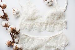 Uppsättning av damunderkläder, beiga med svarta vita band På vit bakgrund på vit bakgrund som dekoreras med bomull, blommar Arkivbild