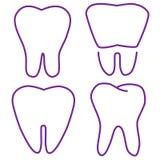 Uppsättning av de stabiliserade tänderna Arkivfoton