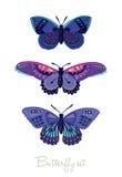 Uppsättning av dekorativa vektorfjärilar Royaltyfri Fotografi