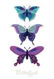Uppsättning av dekorativa vektorfjärilar Arkivfoto