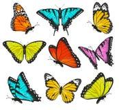 Uppsättning av den färgrika fjärilsvektorn Arkivfoto
