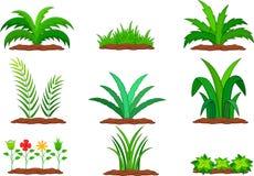 Uppsättning av den gröna växten på en vit bakgrund Stock Illustrationer