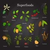 Uppsättning av den hand drog superfoodacaien, goji, kakao, lucuma, vanilj, mullbärsträd, avokado, noni, carob, guarana, maca, kok stock illustrationer