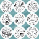 Uppsättning av den havs- cirkeln Djurplattor för marin- liv Hand tecknad vektorillustration Ölkustfartyg, beermat stock illustrationer