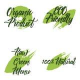Uppsättning av den organiska produkten, rå grön meny, naturliga 100, ECO-vänskapsmatch Royaltyfri Bild