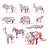 Uppsättning av det lösa djuret Arkivbild