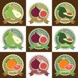Uppsättning av det stic olika för etikettsetikett för nya frukter högvärdiga kvalitets- emblemet Arkivbilder