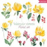 Uppsättning av det vattenfärgblommor och bladet Vektorsamling med sidor och blommor Arkivfoton