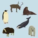 Uppsättning av djur av norden Arkivbild
