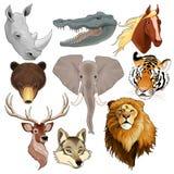Uppsättning av djura huvud Royaltyfri Foto