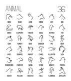 Uppsättning av djura symboler i den moderna tunna linjen stil Royaltyfri Fotografi