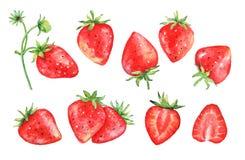 Uppsättning av drog jordgubbefrukter för vattenfärg hand Arkivbilder