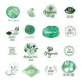 Uppsättning av drog vattenfärgklistermärkear och emblem för organisk mat hand Arkivfoton