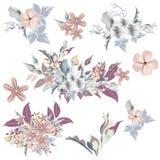 Uppsättning av eleganta blommor för vektor i tappningstil, ideal för weddin vektor illustrationer
